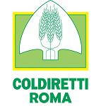 Al via i convegni sull'azienda eco sostenibile in collaborazione con la CCIAA di Roma