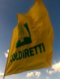 https://lazio.coldiretti.it/wp-content/uploads/2018/06/26820285-204x270.jpeg
