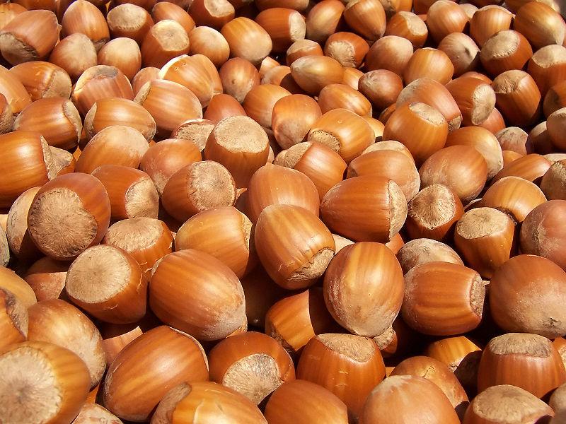 Nocciole: l'industria dolciaria italiana delocalizza in Serbia