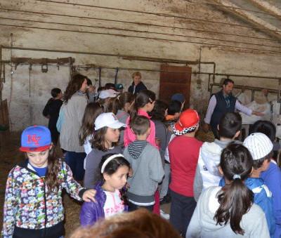 Campagna Amica accompagna i bambini nelle fattorie didattiche