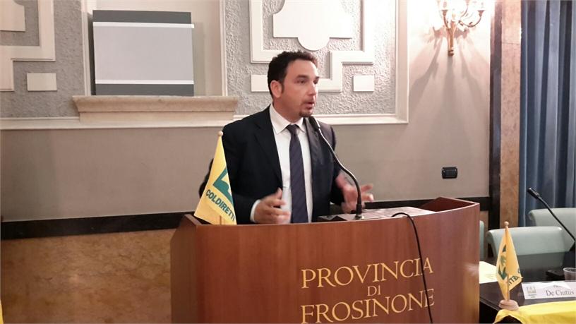FROSINONE, OLIVICOLTURA