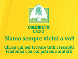Recapiti Lazio